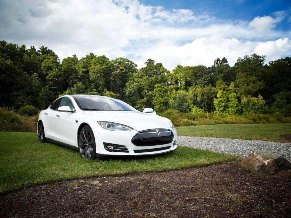 Tesla Model S steht auf einer Wiese.